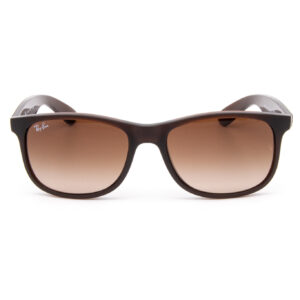 RAY-BAN-RB4202-ANDY-1