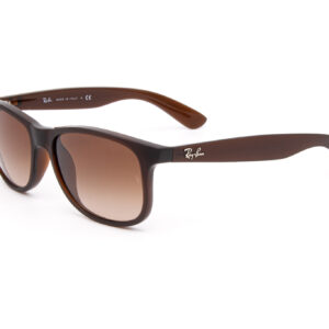 RAY-BAN-RB4202-ANDY-2